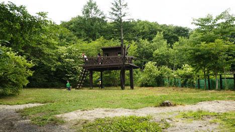北軽井沢スウィートグラスなら、ワンコと一緒に冒険できます!7