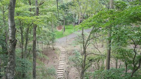 地上12mの森を冒険するフォレストアドベンチャーがお勧め!7