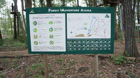 地上12mの森を冒険するフォレストアドベンチャーがお勧め!2