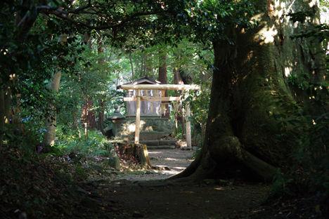 スノーピーク本社に近い彌彦神社は、新潟県最大のパワースポットとして有名なのです。