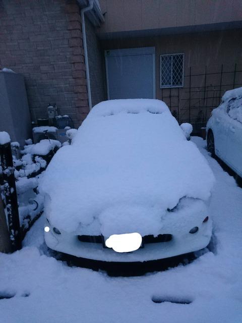 雪で積もった車をうpして車種当てるスレ