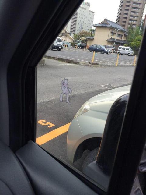 俺の車にミュウツーのシール貼った奴ちょっと来い