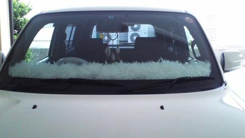 車のダッシュボードに白いフワフワを乗せたい
