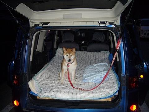 車中泊ってかなり苦痛らしいよ