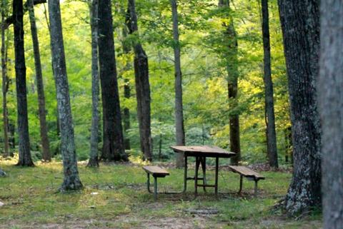 picnic-table-837221_1280