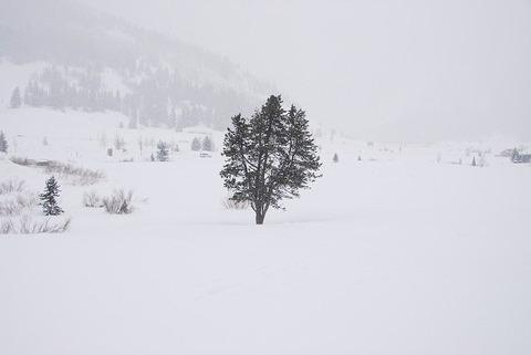 snow-2741032_640