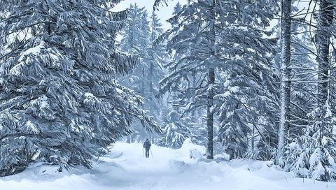 winter-4399912_640