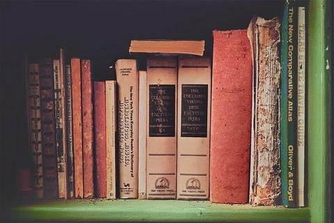 books-698480_640