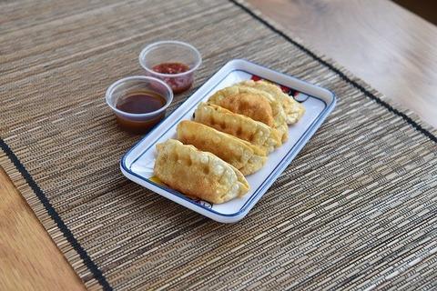 fried-dumplings-4985985_640