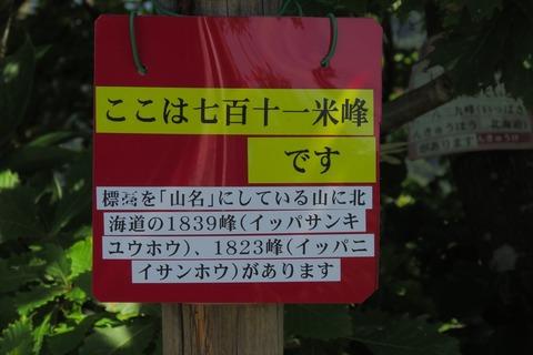 yamaura062