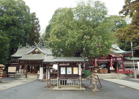 清瀬・日枝神社水天宮5