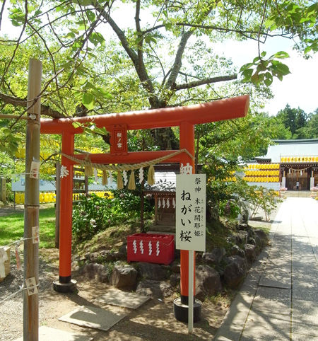 茨城県護国神社8