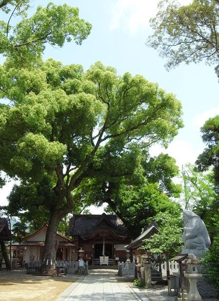 小津神社1