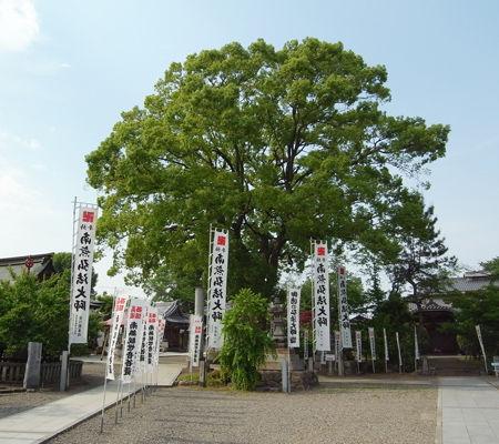 鏡島弘法3
