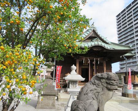 胡録神社8