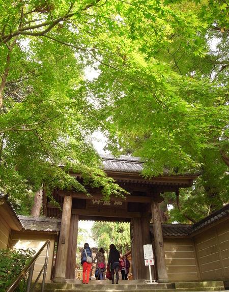 円覚寺101113b