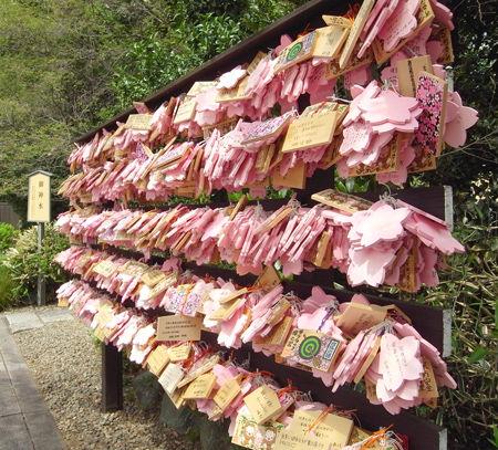 桜木神社7