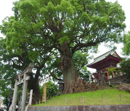 北岡神社5