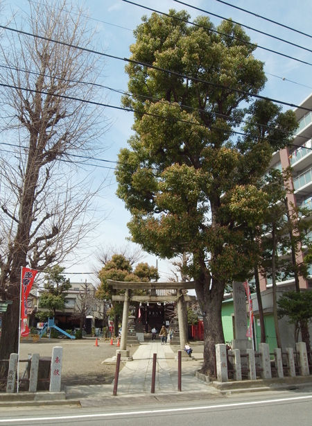 新田神社・氷川神社4