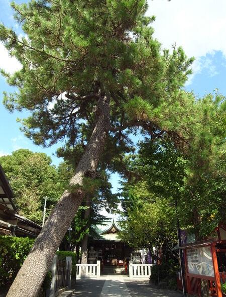 立石熊野神社6