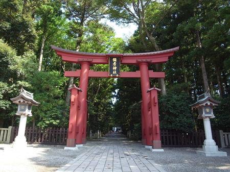 弥彦神社99