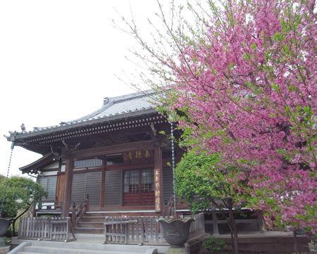 14長徳寺1