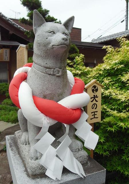 伊奴神社・犬の王