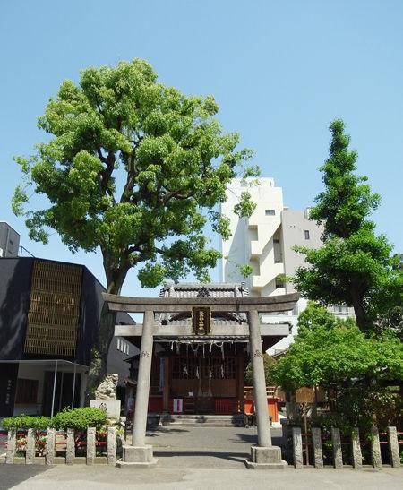 江島杉山6