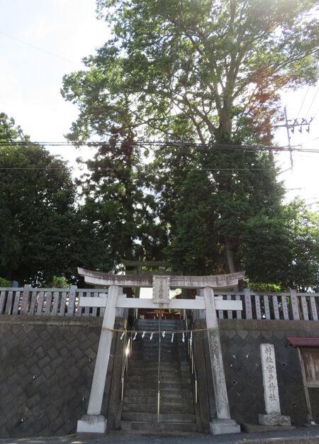 宮古神社4