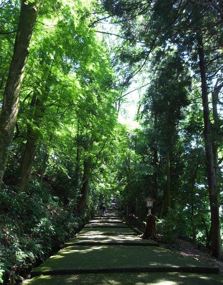 白山比め神社9