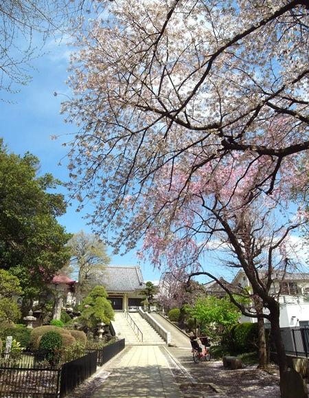 東福寺・境内2