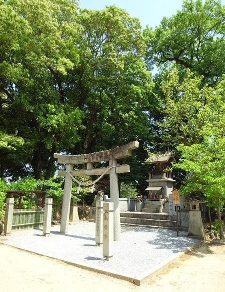 阿智神社・倉敷護国9