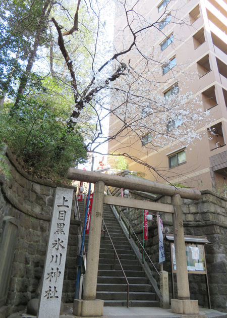 氷川神社・上目黒6