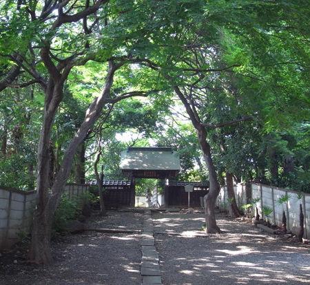 61豊島9