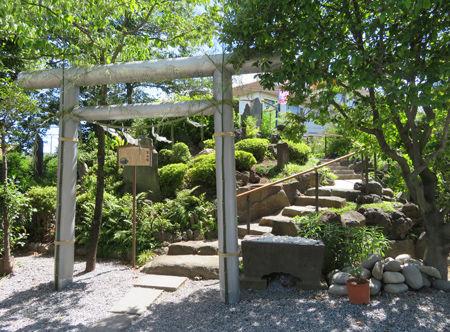 氷川神社・青木7