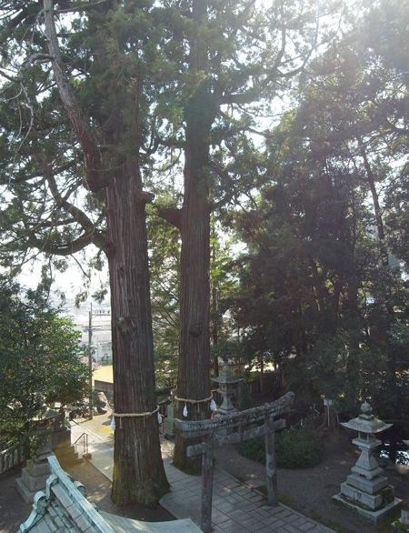 八幡朝見神社9