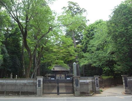8多福寺5