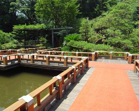 東郷神社1