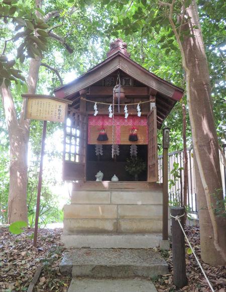 青木氷川神社6