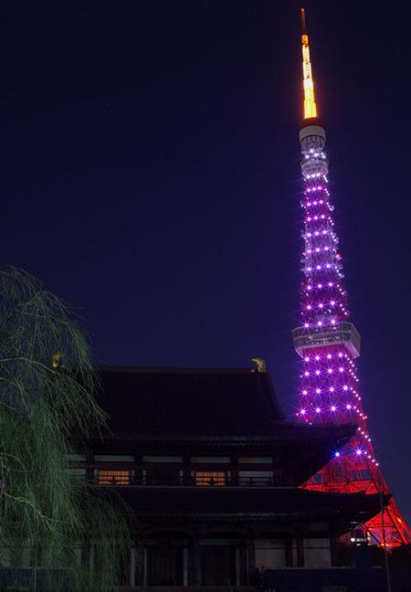 増上寺・夜景