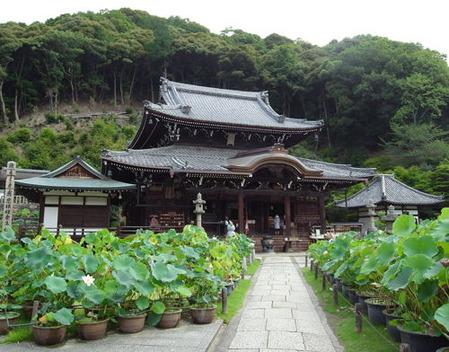 三室戸寺・本堂