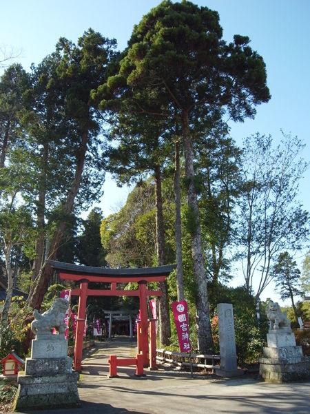 国吉神社9