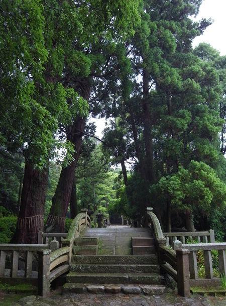 桜井神社8
