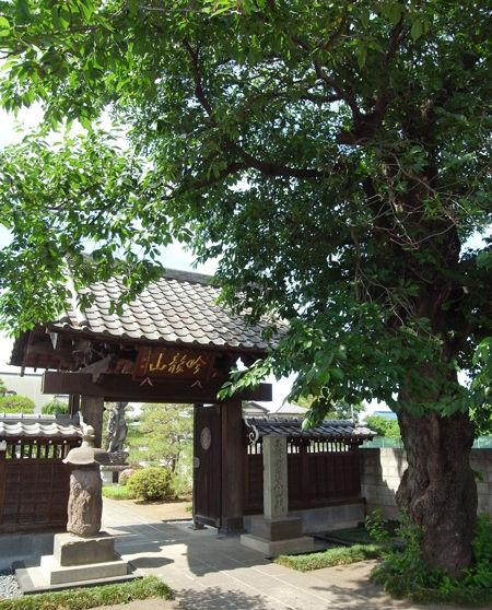 15松林寺7