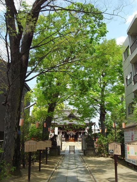 溝口神社7