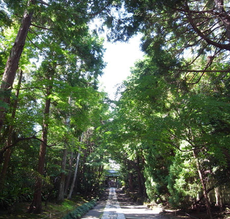 亀谷山 寿福寺