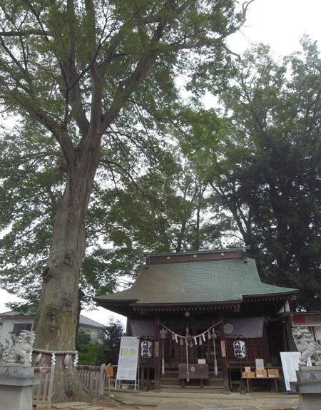 守谷八坂神社4