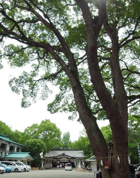 加藤神社8