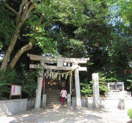 八幡・洗足池9