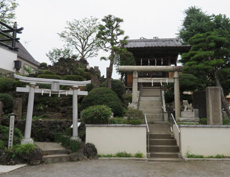 浅間神社・北町・徳丸北野神7